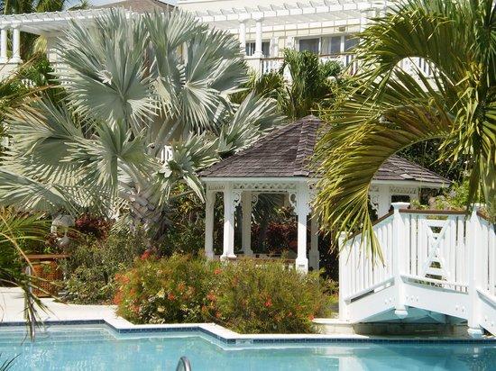 Royal West Indies Resort : The pool by Pelican Bay