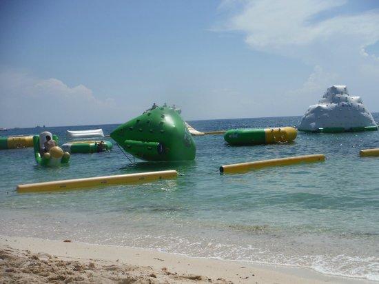 Mr Sanchos Beach Club Cozumel : Mr. Sanchos