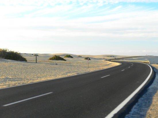 Parque Natural de Corralejo: road