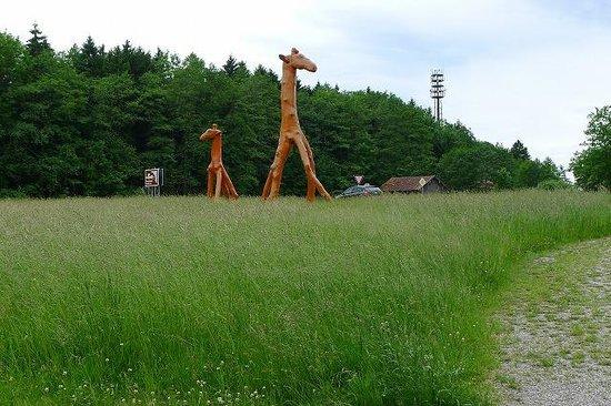 Buchheim-Museum: エントランス