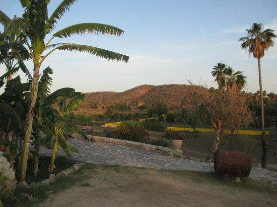 Los Tamarindos: Entrance
