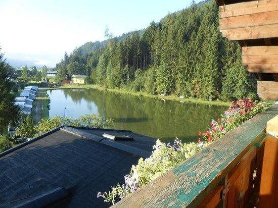 Familiyhotel Bad Neunbrunnen am Waldsee: het meer