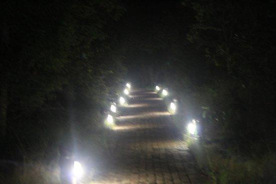 Kapama Southern Camp: Caminho para o chalé