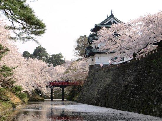 Hirosaki Castle : 見納め
