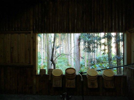 Lodge Yaedake Sanso : 杉見風呂