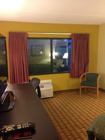 Ramada Asheville Southeast : Window view.