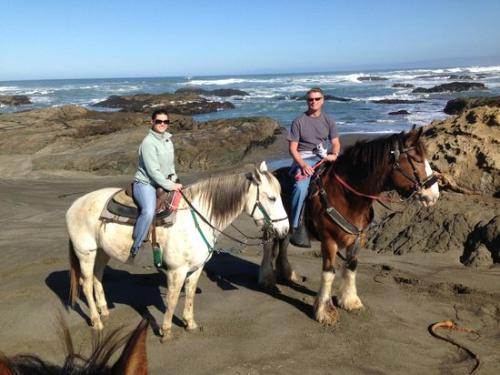 Ricochet Ridge Ranch: Horses on the beach