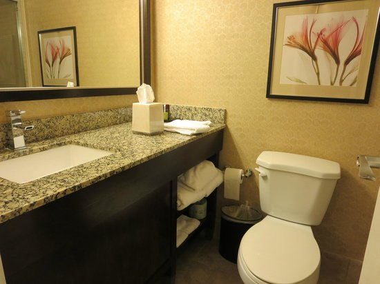 Embassy Suites by Hilton Hotel Los Angeles-Downey : Bathroom