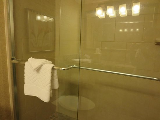 Embassy Suites by Hilton Hotel Los Angeles-Downey: Bathroom