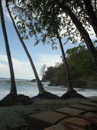 Arenas del Mar Beachfront and Rainforest Resort, Manuel Antonio, Costa Rica: Playitas beach