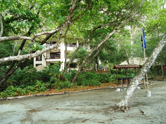 Arenas del Mar Beachfront and Rainforest Resort, Manuel Antonio, Costa Rica: View of property from beach