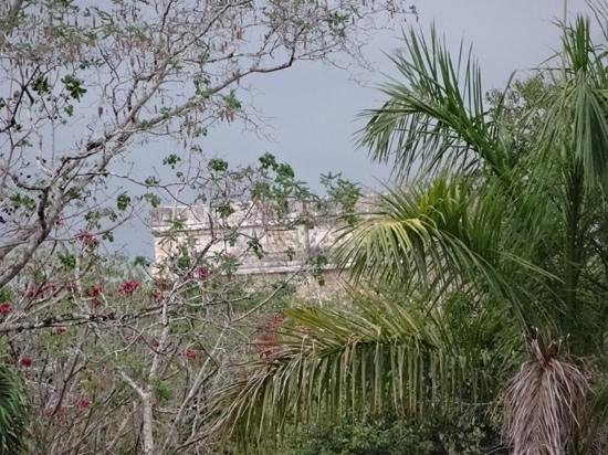 Hotel & Bungalows Mayaland: view of the top of El Castillo from the hotel grounds