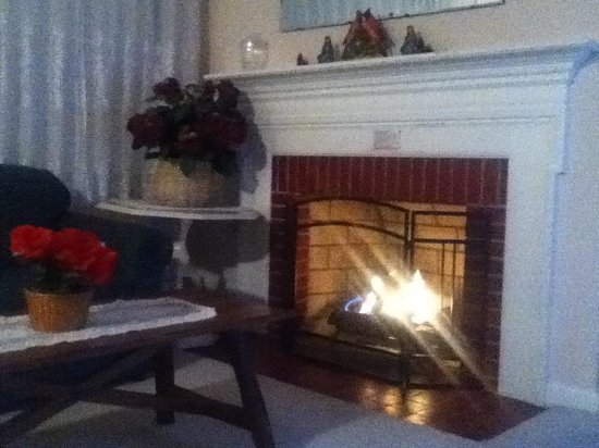 The Cardinal Inn : Fire place in the suite.