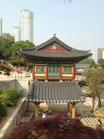 Bongeunsa Temple: Gorgeous temple in Gangnam!