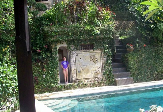 Alam Indah : pool area ,,,watch out for the monkeys