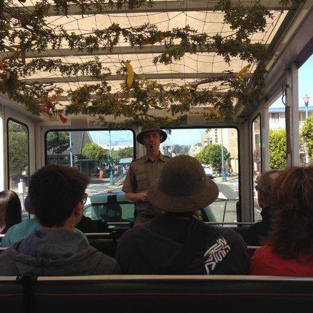 The Urban Safari : On the Zebra Truck