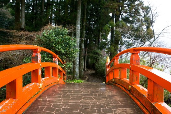 Hakone Shrine / Kuzuryu Shrine Singu : red bridge