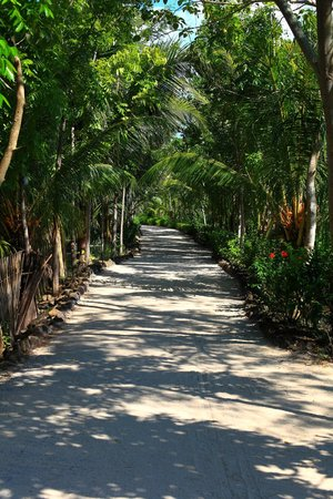 Sempiak Villas : The walk to the restaurant