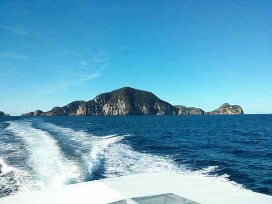Dive Tutukaka: Bay of islands