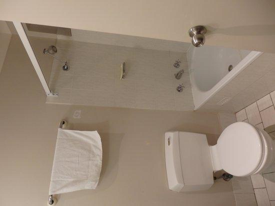 Towradgi Beach Hotel : Bathroom