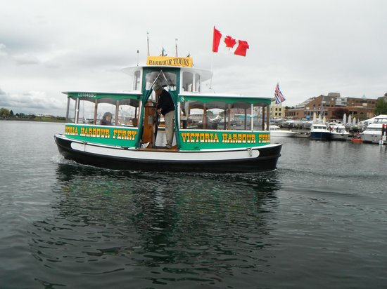 Victoria Harbour Ferry : Taxi in Motion