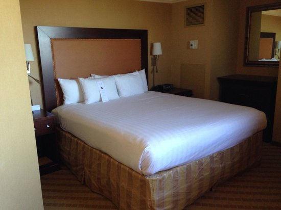 Hyatt Regency North Dallas/Richardson: King bed