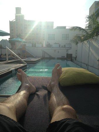 Posh South Beach Hostel : Piscina do hostel