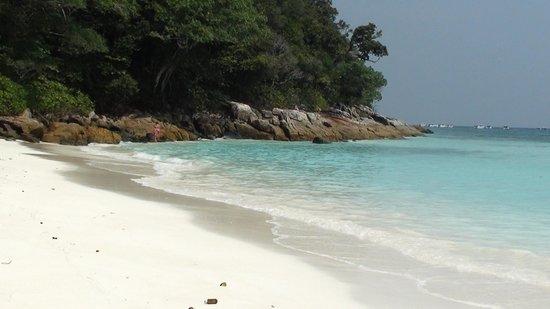 Ko Tachai Island: Tachai Island beach