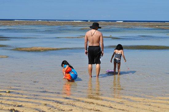 Puerto Del Sol Beach Resort: Beach front