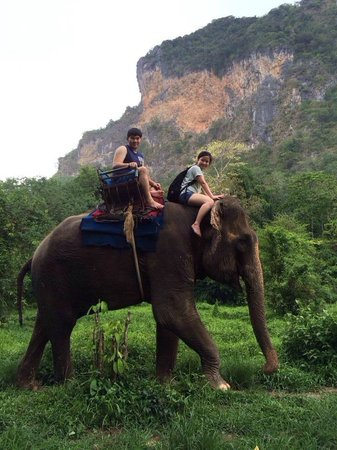 Nosey Parker's Elephant Camp - Private Day Tours: Elephant ride!