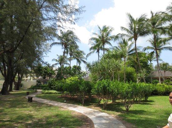 Tanjung Rhu Resort: Garden