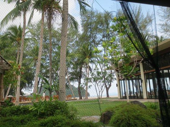 Tanjung Rhu Resort : Garden