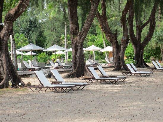 Tanjung Rhu Resort : Deck chairs