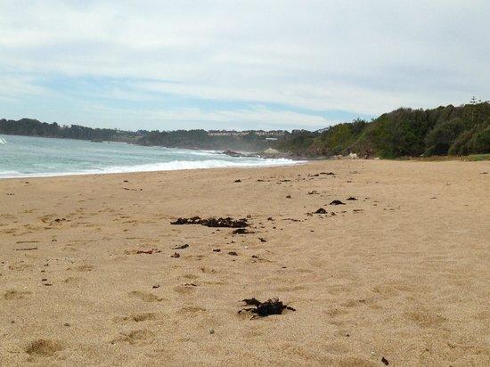 Nautilus Beachfront Villas & Spa: Private sapphire beach