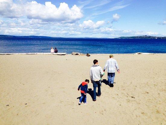 Alki Beach : Sandy beach
