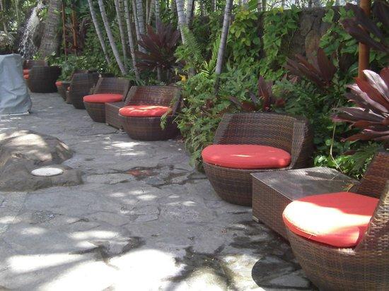 Courtyard Waikiki Beach : Chairs Poolside