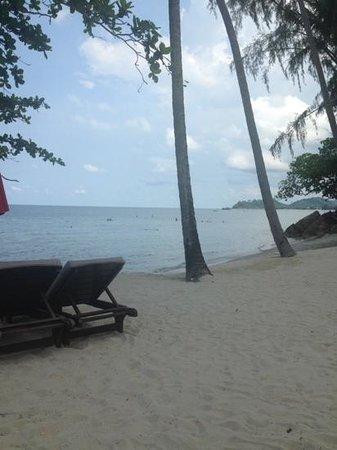 The Emerald Cove Koh Chang: stranden lige ved hotellet.