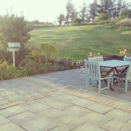 The Red Door Westport: garden patio area