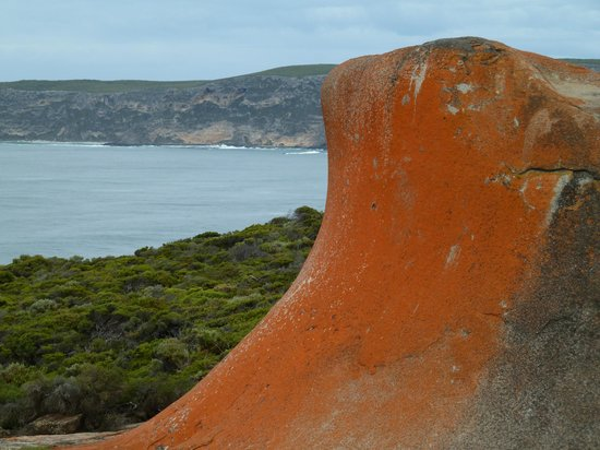Snellings View: Remarkable Rocks