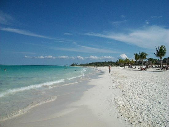 Secrets Maroma Beach Riviera Cancun : beach