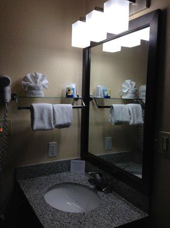 BEST WESTERN McCarran Inn: Bathroom