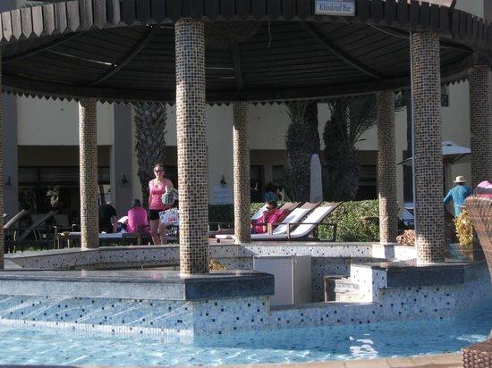 Hotel Paradis Palace : bar pisicne