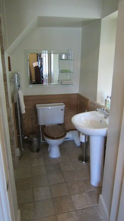 Bryn Guest House: Bagno