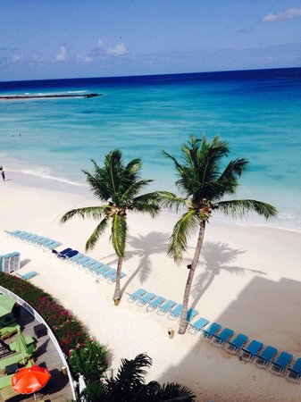 Radisson Aquatica Resort Barbados : View from my room