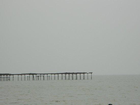 Alappuzha Beach: bridge near beach