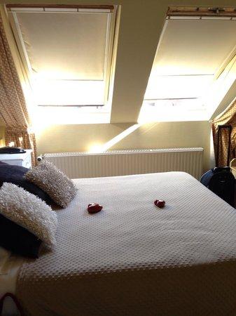 Botaniek  Hotel : Room 8
