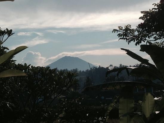 Ubud ArtVilla : view of the mountain from the villa