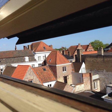 Botaniek  Hotel: View from room 8