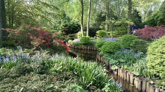 Park bild von keukenhof lisse tripadvisor for Bbc garden designs