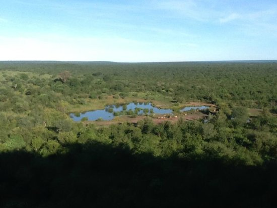 Victoria Falls Safari Lodge: View to water hole from dining area and rooms